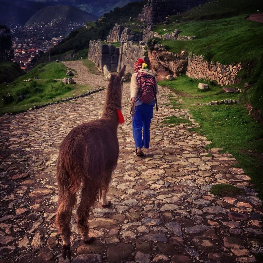 sacsayhuaman-cusco